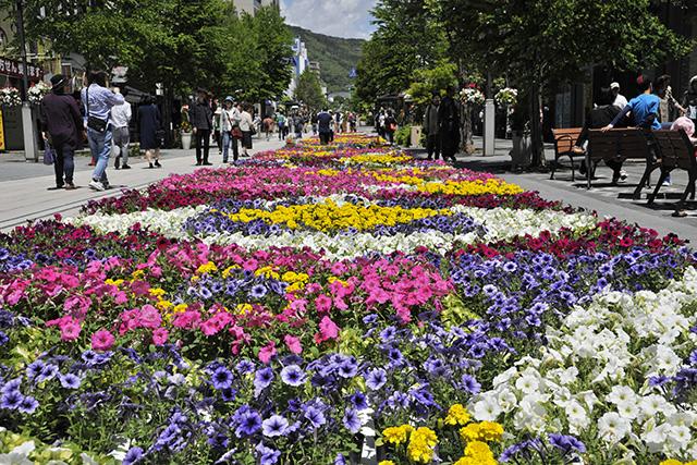 Nagano Zenkoji Flower Corridor